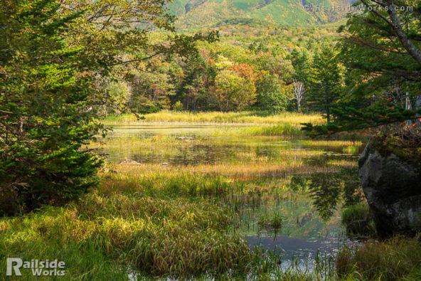 色付きはじめの知床二湖